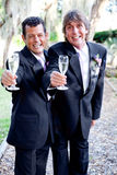 Toasting Gay Marriage Royalty Free Stock Photo