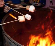 Toasting Marshmallows Royalty Free Stock Photo
