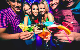 Toasting at party Stock Photography