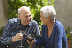 Toasting with red wine. Lovely senior couple on a picnic toasting with wine Royalty Free Stock Photography