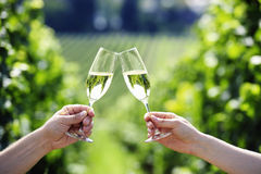Toasting with two glasses of Champagne. In the vineyard Stock Photos