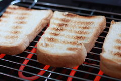 Toasts. Breads toasted on an electric grill Stock Photo