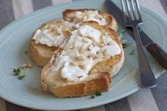 Toasts with goat's cheese Royalty Free Stock Photography