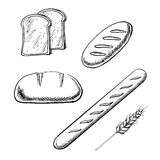 Toasts, long loaves, baguette and wheat ear Royalty Free Stock Image