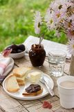 Toasts with plum chocolate jam and cocoa. Breakfast in the garden. Rustic style, selective focus. Stock Photos