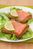 Toasts with salmon Royalty Free Stock Image