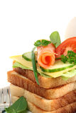 Toasts with salmon. Royalty Free Stock Images