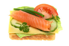 Toasts with salmon vegetables. Stock Photos