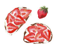 Toasts with strawberry and cottage cheese or tofu or ricotta. Watercolor food illustration vector illustration