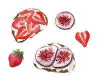 Toasts with strawberry and figs and cottage cheese or tofu or ricotta. Watercolor food illustration isolated on white stock illustration