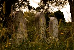 Tombstones among grassy nature royalty free stock photo