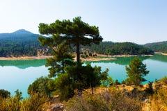 Toba reservoir in Serrania de Cuenca Stock Images