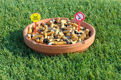 tobacco Royalty Free Stock Photography