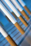Tobacco. Addict, addiction,  cancer, cigarette, close-up, danger, deadly, death, tobacco Royalty Free Stock Photo