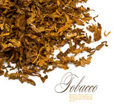Tobacco. Cut and dried different sorts (kinds) tobacco leaves Stock Image