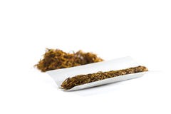 Tobacco. Cigarette prepared to be rolled with more  in background Stock Image