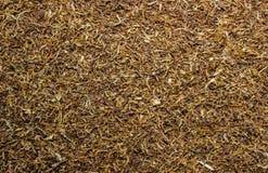 Tobacco Royalty Free Stock Image
