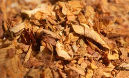 Tobacco. Macro pattern of dried tobacco leaves Stock Images
