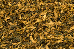 Tobacco Stock Photos