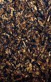 Tobacco background stock photo