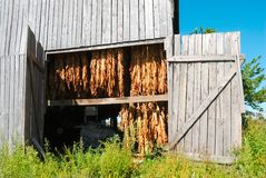 Tobacco Barn in Kentucky USA Stock Photo