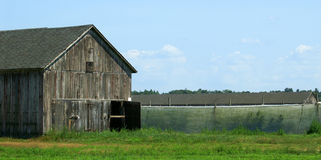 Tobacco Barn and Netting Royalty Free Stock Images