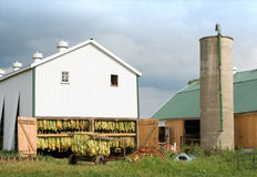 Tobacco Barn and Wagon Stock Image