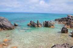 Tobacco Bay. Beach in Bermuda Royalty Free Stock Photo