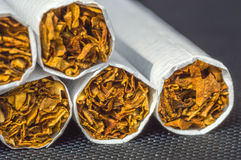 Tobacco cigarette Stock Image
