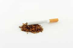 Tobacco. Cigarette and tobacco isolated on white Royalty Free Stock Image