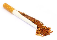 Tobacco and cigarette Royalty Free Stock Images