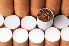 Tobacco in cigarettes close up Royalty Free Stock Images