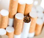 Tobacco in cigarettes Royalty Free Stock Photography