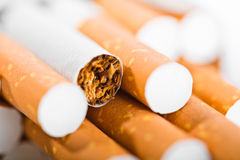 Tobacco in cigarettes. With a brown filter close up Stock Photos