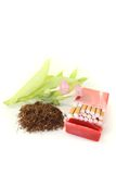 Tobacco with cigarettes case, leafs and blossoms Stock Image