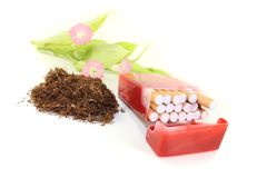Tobacco with cigarettes case and leafs Royalty Free Stock Images