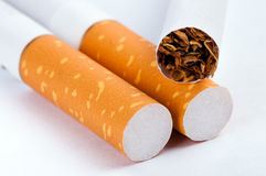 Tobacco in cigarettes close up Stock Image
