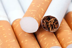 Tobacco in cigarettes close up. Tobacco in cigarettes with a brown filter close up Stock Photography