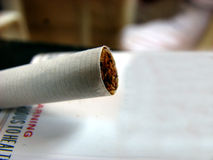 Tobacco Cigarrette. A macro view of the tobacco in a cigarrette Royalty Free Stock Images