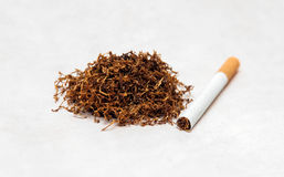Tobacco. Dry tobacco on white background Stock Photo