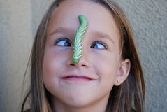 Tobacco horn worm on nose Royalty Free Stock Photography