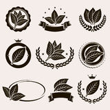 Tobacco leaf label and icons set. Vector Stock Image