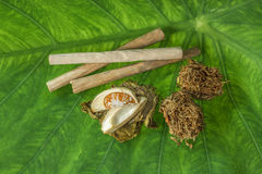 Tobacco leaves were dried, Royalty Free Stock Photo