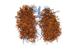 Tobacco in lungs Stock Photos