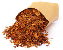 Tobacco for making cigarette Stock Photography