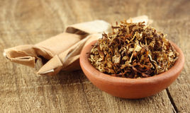Tobacco for making cigarette Stock Photo