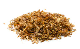 Tobacco. Pile of dried tobacco isolated on white Royalty Free Stock Photo