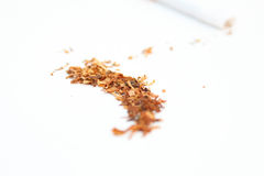 Tobacco Spilled Royalty Free Stock Photos