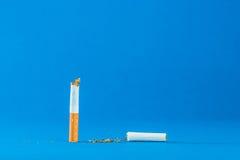 Tobacco still life Royalty Free Stock Photography