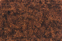 Tobacco texture background Royalty Free Stock Photography